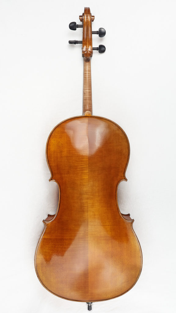 Back view of cello