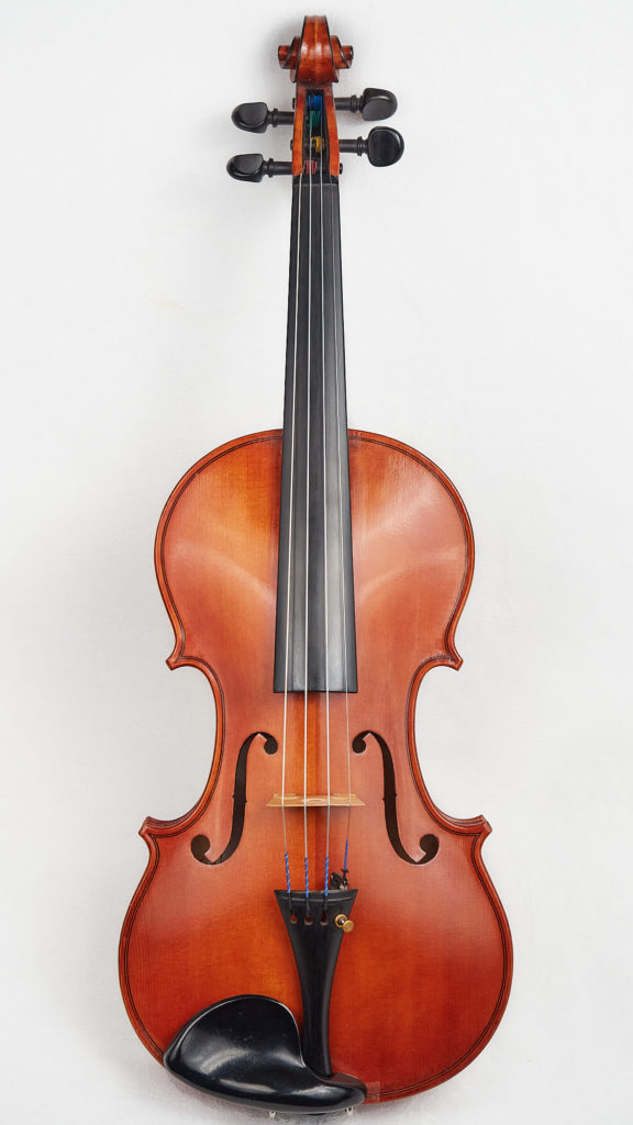 Front view of a violin by Dota Williams