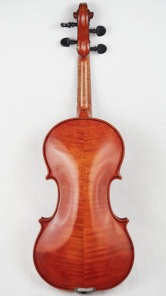 Back of Violin by Dota