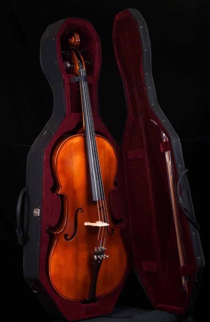 Cello, bow in case